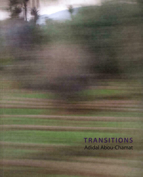 Adidal Abou-Chamat: Transitions